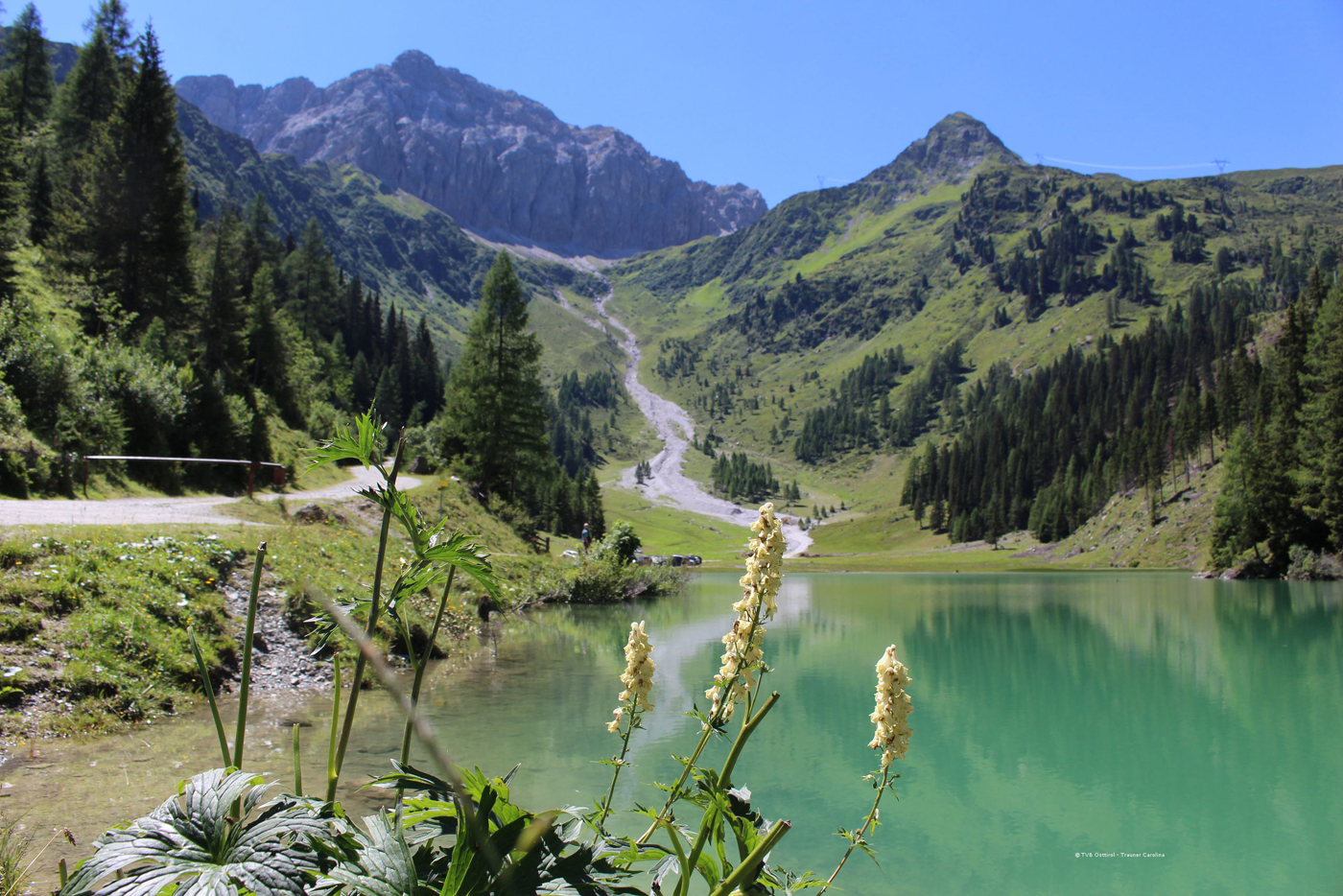 d1a8489d9db346 Summer Holiday- Hotel Weiler (Obertilliach Osttirol)